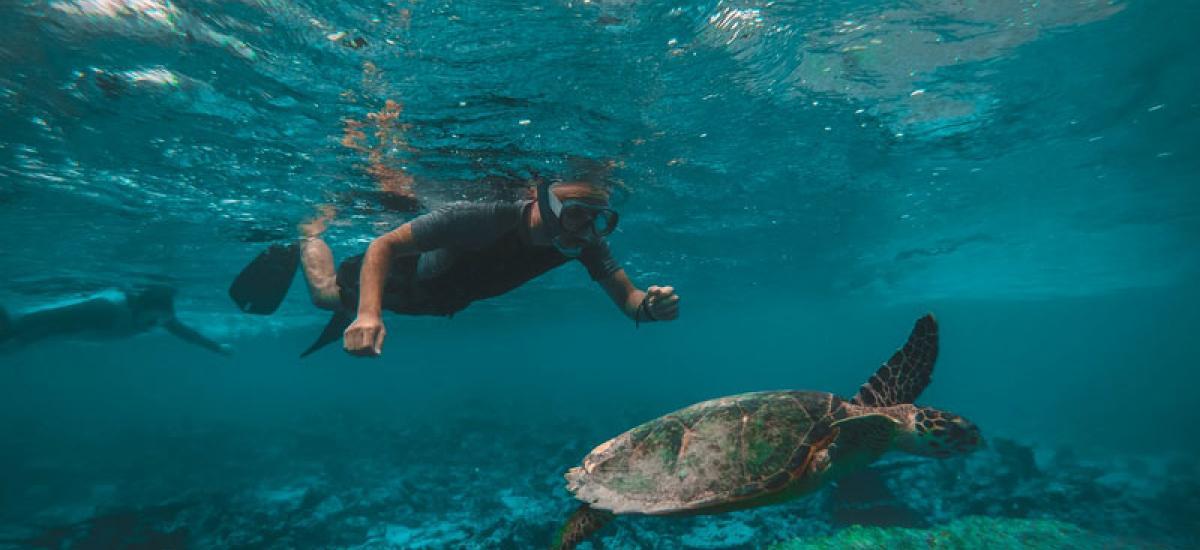 1D1N + Snorkeling Package