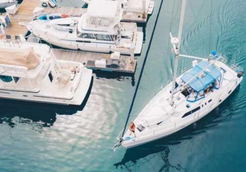 Starfish Fast Cruise