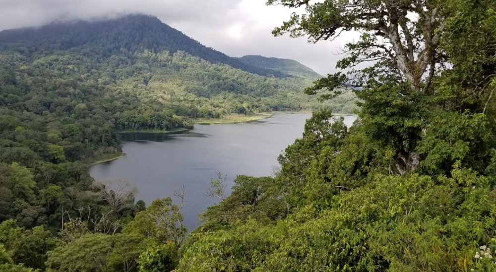 Lake Tamblingan and Lake Buyan