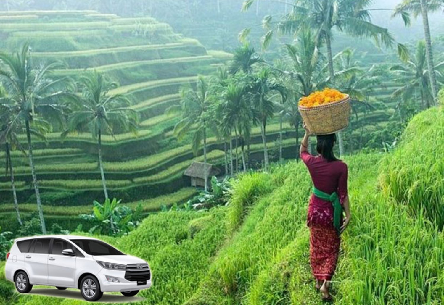 Taxi from Ubud to Tegalalang Rice Terrace (Recommended) - Water Blow Bali