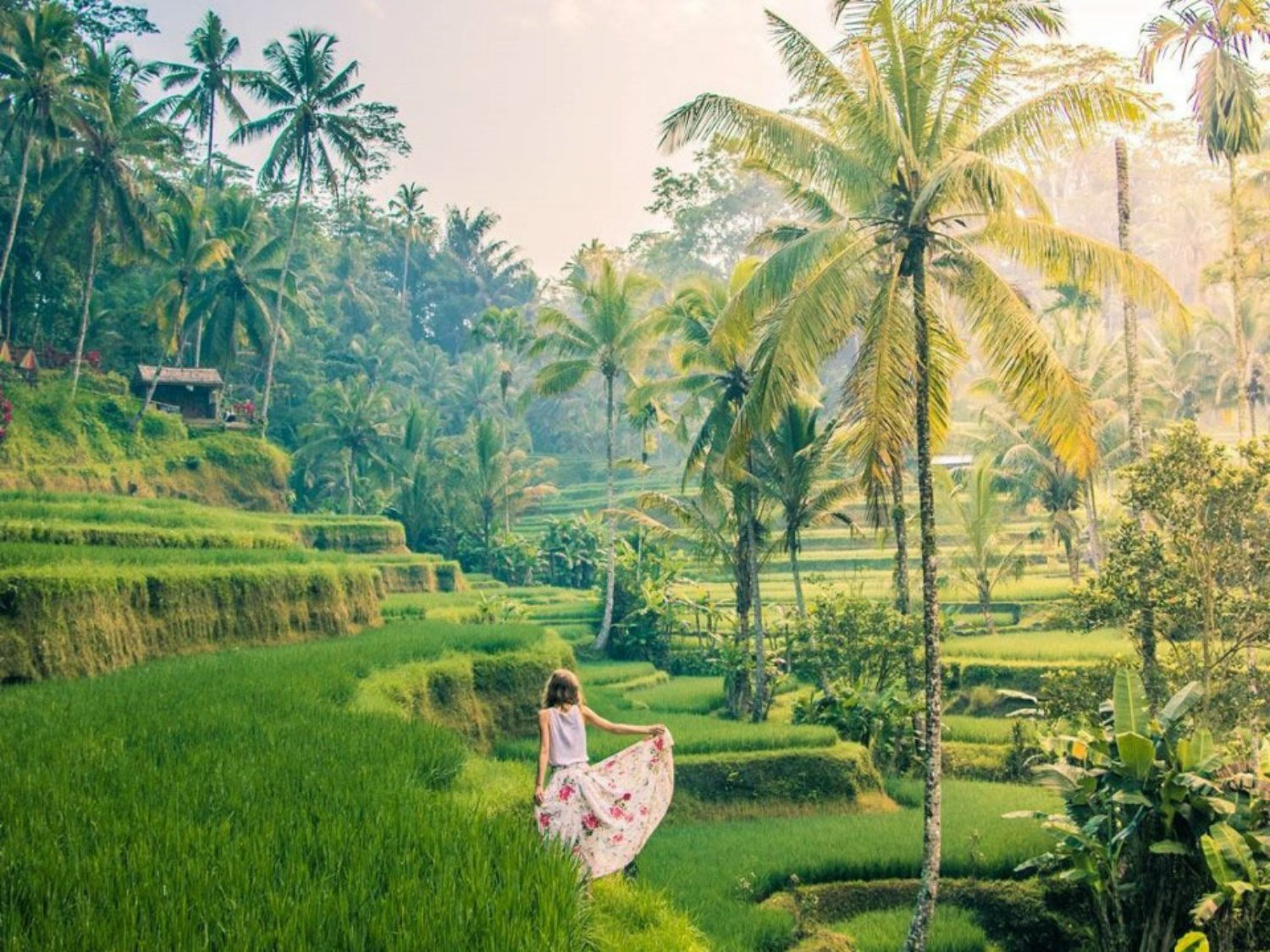 Fascinating Rice Terrace in Tegalalang Ubud